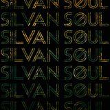 Silvan Soul 15