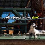 """""""Hip-Hoping under the SUN""""-Fastbird-Routine.No.04"""