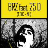 BRZ feat 25D > Live @ Sources and Roots