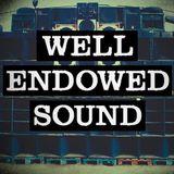 16AJ & Osci presents Well Endowed Sound - Dubplate Mix 2013 Pt. 1