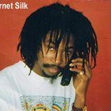 Garnet Silk on Irie Vibes with Glenn Walker Foster