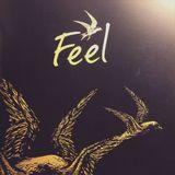 Rodeo - Feel Festival 2016