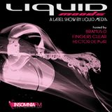 Bramus-D - Liquid Moods 063 pt.1 [Dec 4, 2014] on InsomniaFM.com