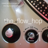 The Flow Hop 21