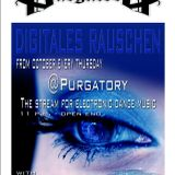 """""""digitales rauschen"""" preview for the 4th october 2012 @ purgatory"""