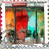 Sherwood showcase#012@Dj Serhio Serokust live on NightStupinoTV