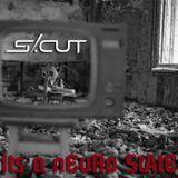 scut_NeuRo_StAtE