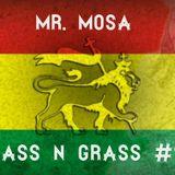 MR.MOSA - BASS N GRASS #9 [dubstep, deep dubstep, dub, raggastep, trap mix] August 2014