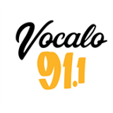 The Narcoleptic June 16'  Vocalo friday night mix series
