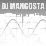 Dj Mangosta - Podcast #1 4.05.13 (House, Club House)
