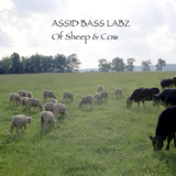 ASSID BASS LABZ - Of Sheep And Cow