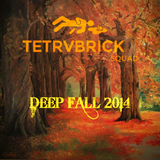 Tetrvbrick SQUAD - Deep Fall 2014