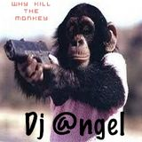 """Why Kill the Monkey"" w/dj @ngel"