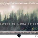 Drowned in a Sea of Sound, Volume 22