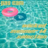 pas cam wicked summer 14 selection