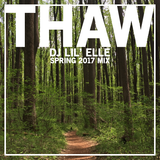 THAW Spring 2017 Mix