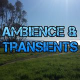 Ambience & Transients 035 - KCSB (06-19-15)