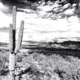 Desert Sky - Spring 2015 Deep House Mix by Elektra Tek