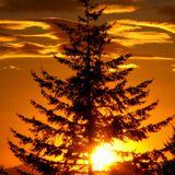 Magic Sunset 068 (The Christmas Spirit)