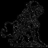 ACID4G3/SRBR303 - girl´s TOM girl´s