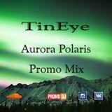 TinEye - Aurora Polaris #003