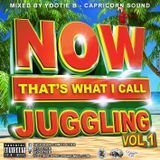 Capricorn Sound - Now Thats What I Call Juggling Vol 1{Dancehall Mix 2016}