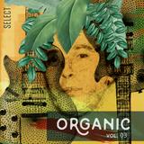 Organic vol. 03 by Roberto