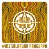 UCR #013 by Salvador Araguaya