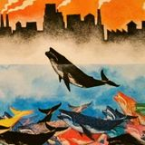 Whale City: music for jazz boating