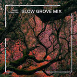 Eclectic Mix 06 - Dharit Hobbs Tan's Slow Grove Mix