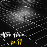 After Hour Vol. 11