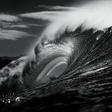 Logical Disorder & Black Waves SET