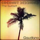 The Sunset (Coconut Sessions 2013 Part 1)