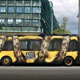 zoo project milou