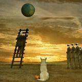 Quest for Transcendence