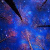Ruslan Kuleshov - Winter Fairy Mix