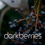 Darkberries Live Set - May 20th, 2014