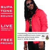 Spring 2011 - Reggae Promo CD