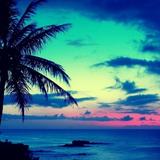 Tropical Mix - July 2015