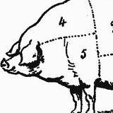 Data Mining 02: Pig