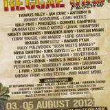 Mangotree @ Reggaejam Festival 2012 - pt 1