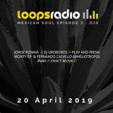 Monty & Fernando Calvillo - Afferent sessions Episode 20 - Loops Radio - Mexican Soul 003
