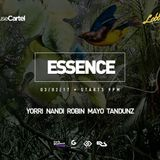 Essence 03-02-2017: Mayo (House Cartel)