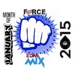FORCE EDM MIX MONTH OF JANUARY 2015