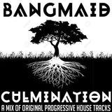 Culmination IV: all-original tech house and progressive, tech house and dubtechno