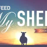 IF YOU LOVE ME, FEED MY SHEEP: Called Out, pt. 6