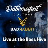 Bad Rabbit at Bass Hive