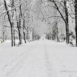 """ECOUTEZ LA NOUVELLE (EN APARTE) - Charles SYLVESTRE  """"L'hiver'"""