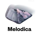 Melodica 30 March 2015