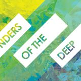 Wonders Of The Deep 03 with LOMER